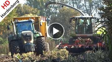 Harvesting Mais In The Mud | Fendt 927 + Claas Jaguar + John Deere | Modderen | Schimmel Overberg