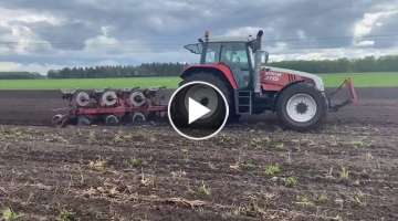 STEYR 9115 Cornland Plows (SOUND VIDEO) Cornland plowing [straight pipe]