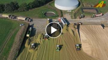 Large-scale use of maize chopping 2020 - 3500 ha maize harvest 20 Claas tractors / chopper farmer...