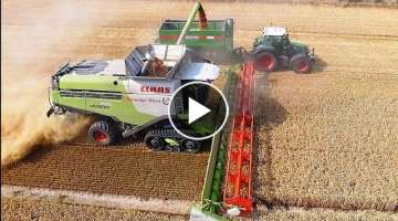 Amazing Modern Agricultural Machinery Technology At Master Level And Fastest Farm Machine Workin...