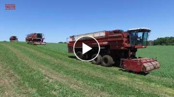 Big Farm Machines Harvesting Vegetables