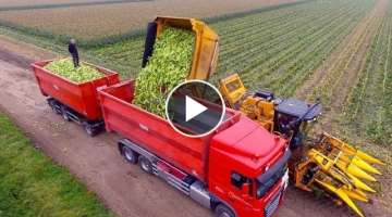 Best Agriculture Machines At New level - Amazing Heavy Equipment Machines Working #2