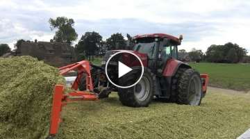 Silage maize at Kamphuis by contracting company De Hoop - Wierden (2016)