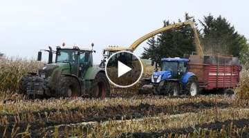 Fendt 933 Vario Pulling Stuck Tractors Out Of The Mud All Day | Maize Chopping | Häckseln 2017