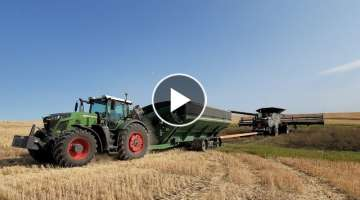 Fendt 942 Gen 6 - Fendt Ideal 9 - An Ideal stuck ????