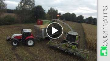 Maize chopping with Claas Jaguar 960 and Steyr tractors | Corn harvest 2016